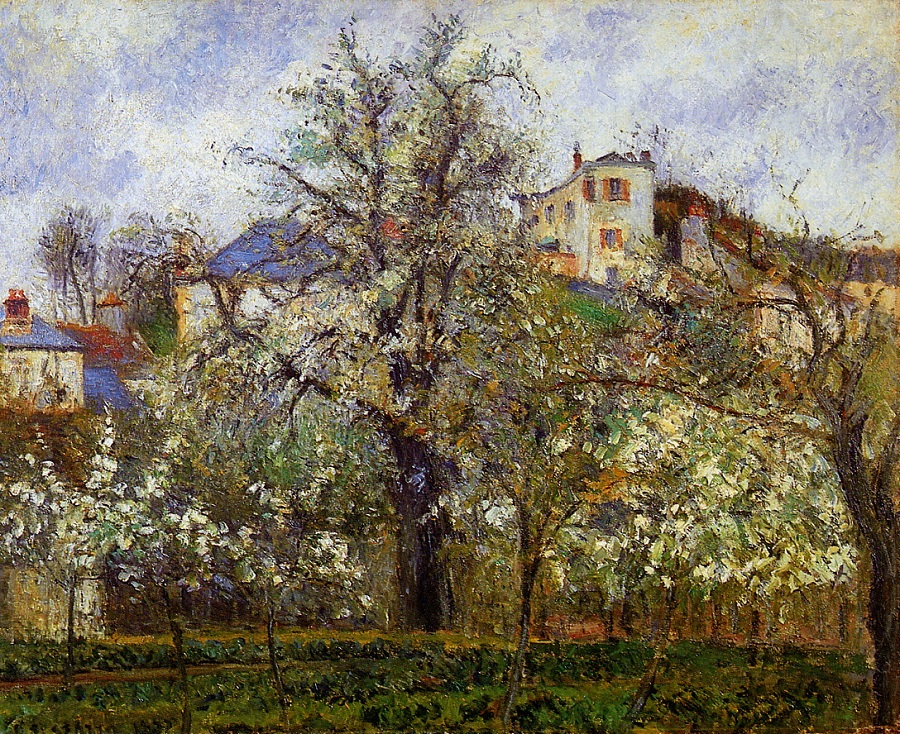 Kitchen Garden with Trees in Flower, Spring, Pontoise, 1877 by Camille Pissarro